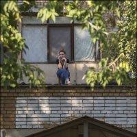 ...которая на крыше :: Александр Тарноградский