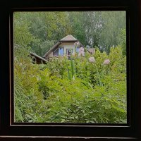 Окно в сад :: Tanja Gerster