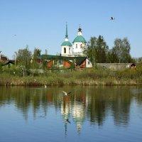 Озеро Киово :: Юрий Моченов
