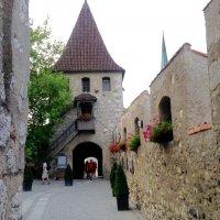 "замок ""Laufen"" :: Светлана Баталий"