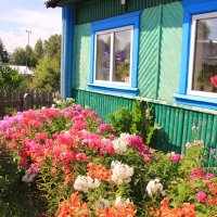 Даже в дальних небольших поселениях есть дворы все в цветах... :: Александр Широнин