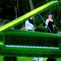 Зелёный  рояль... :: Евгений