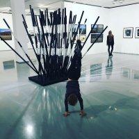 Изучение нового искусства :: Сергей Колганов