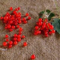 Солнечные ягодки :: Татьяна Лютаева