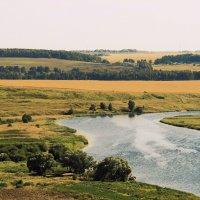 Река Проня :: Елена Минина
