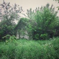 Домик в деревне Утро :: Руслан