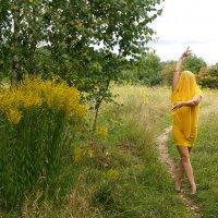 Жёлтый цвет. :: Владимир Безгрешнов