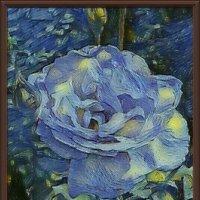Голубая роза :: Владимир Бровко