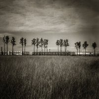 """Граница..."" :: Sergey Okhotsky"