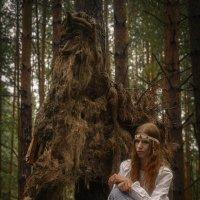 Дух леса :: Андрей + Ирина Степановы