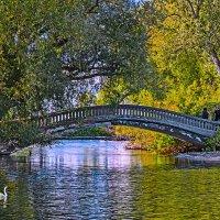 Мост, люди и вода. :: Vladimir Dunye