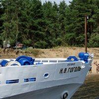 Через Гоголь на берег и выходили :: Raduzka (Надежда Веркина)