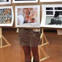 На выставке :: Asya Piskunova