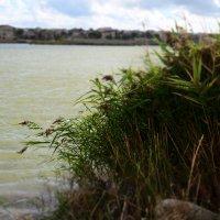 Озеро :: Юлия Кулиш