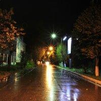 Ночь, улица, фонарь... :: Михаил Смуров
