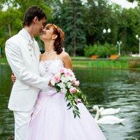 Свадебное :: Инна Ильина