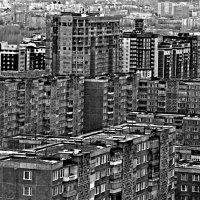 человейники :: Alexandr Shemetov
