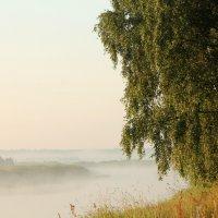 Утренний обет природы :: Софья Погорелова