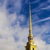 Петропавловский собор :: Олег Мелентьев