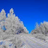 Уральская зима :: Wanderer Burunduck
