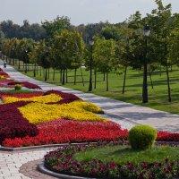 Цветочный бульвар :: Константин Фролов