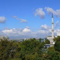Сентябрь Босфора... Терраса Deniz. А как же Восточный экспресс направляется в Азию?... :: Леонид Нестерюк