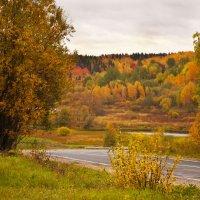 Осень :: Светлана Вдовина