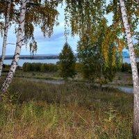 Осень . :: Наталья Юрова