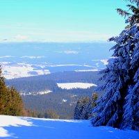 Geisskopf berg :: Михаил Бояркин