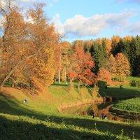 Золотая осень :: Михаил Бояркин