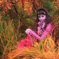Осень :: Дмитрий Полетаев
