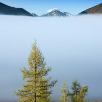 Туман на Ильчире III :: Владимир Сковородников