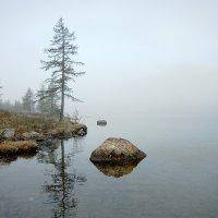 Туман на Ильчире I :: Владимир Сковородников