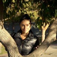 осень в цвете :: Sergey Romanko
