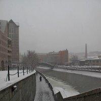 Зимний минимализм (2) :: Ева Такус