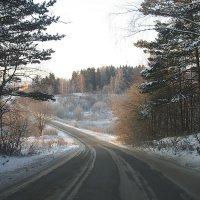 зимняя дорога :: Николай Див