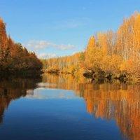 Золотая река :: Сергей