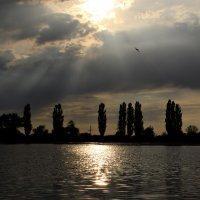 Озеро :: Анна Anuta