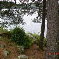 Норвежский пейзаж :: Galina Dolkina