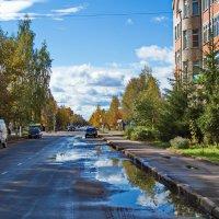 Краски осени. :: Sergey Serebrykov