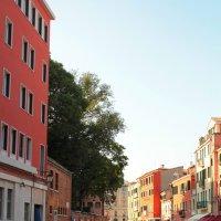 Венеция :: Erizo Espinoso
