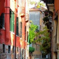 улочки Венеции :: Erizo Espinoso