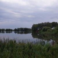 Природа Сурского края :: Борис Назаров