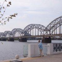 Рига, мост :: Диана Матисоне