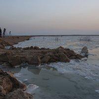 Мертвое море.Коллеги :: susanna vasershtein
