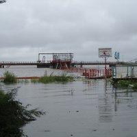 наводнение август 2013г. :: oleg Мешалкин