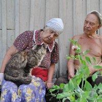 Любимые дедушка и бабушка :: Елена Киричек