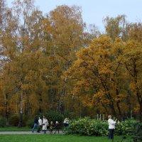 Осень :: Sysop