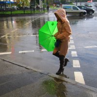 Дождь и солнце :: Ростислав