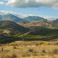 Долина виноградников :: Игорь Кузьмин